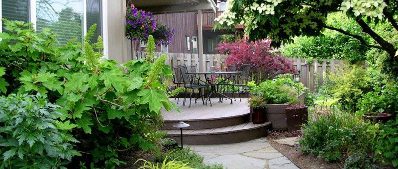 Completing the Landscaping of Your Yard